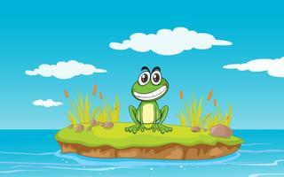 een kikker en een water vector