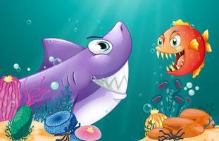 Een haai en een piranha onder de zee