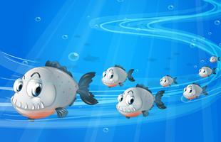 Een school van grijze vissen