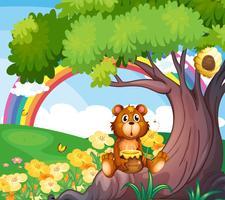 Een beer onder de boom met een regenboog aan de achterkant
