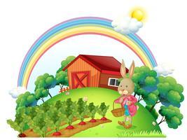 Een konijn met een mand in de tuin