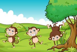 De drie apen