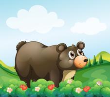 Een grote bruine beer in de tuin