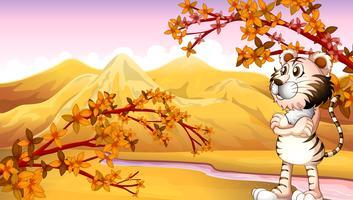 Uitzicht op de berg in de herfst vector