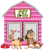 Honden in roze huisdierenhuis vector