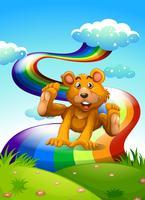 Een heuveltop met een speelse beer in de buurt van de regenboog vector