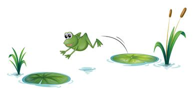 Een springende kikker