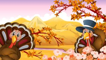 Twee kalkoenen in een de herfstmening