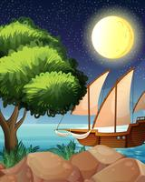 Een houten boot dichtbij de boom