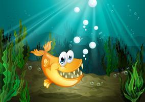Een oranje vis met grote hoektanden