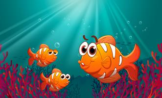 Drie vissen onder de zee met koralen