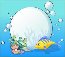 Een vis en zeeschelpen onder de zee