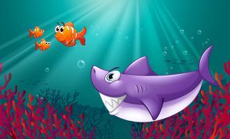 Een grote haai en drie nemos onder de zee