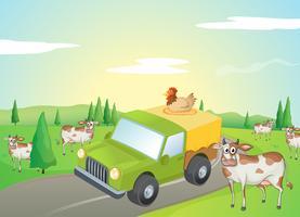 Koeien en een kip vector