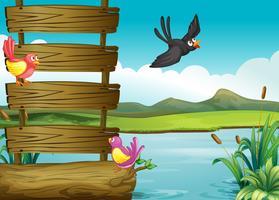 Vogels dichtbij een lege houten signage