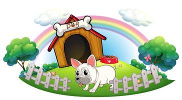 Een hond in een hondenhok met omheining