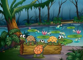 Een bos met schildpadden en vissen bij de vijver