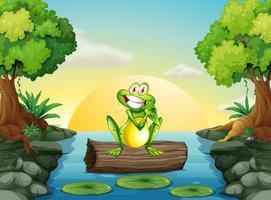 Een kikker bij de rivier die boven het logboek staat
