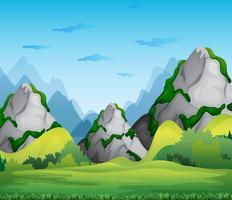 bergen vector
