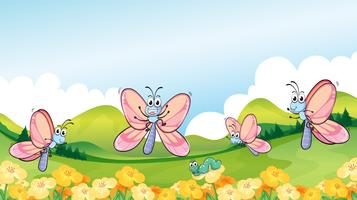 Vlinders in de tuin