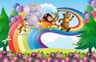 Een groep dieren bij de regenboog