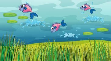 Een vis in een rivier en een prachtig landschap