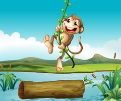 Een aap die slingert