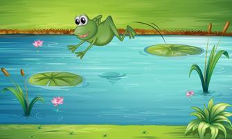 Een kikker springen vector