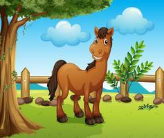 Gelukkig bruin paard binnen een omheining
