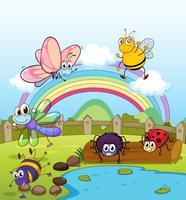 Kleurrijke insecten