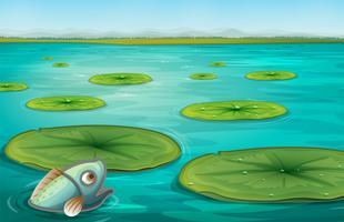 waterlelies vector
