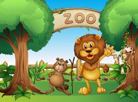 Een aap, een bever en een leeuw in de dierentuin