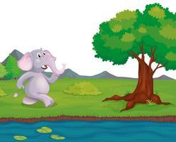 Een olifant aan de rivieroever