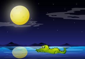 Een krokodil in de oceaan