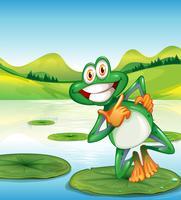 Een gelukkige kikker die zich boven de waterlelie bevindt