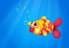 Een pouty vis in het midden van de zee