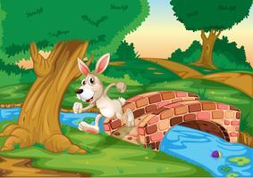 Een konijn dat over de brug loopt vector