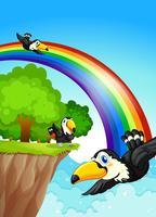 Een regenboog dichtbij de klip met vliegende vogels vector