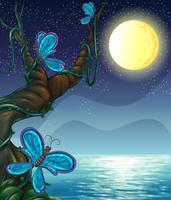 Vlinders die rond een grote boom zwerven