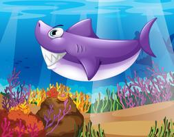 Een haai die op de bodem van de zee glimlacht vector