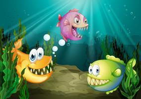 Drie verschillende soorten vissen met grote hoektanden onder de zee