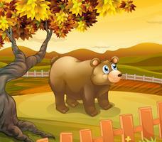 Een grote beer in het hek