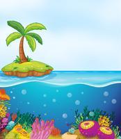 koraal en palmboom op het eiland