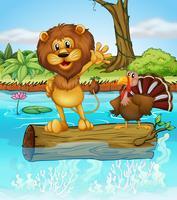 Een leeuw en een kalkoen boven een drijvend hout