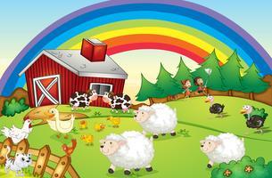 Een boerderij met veel dieren en een regenboog aan de hemel