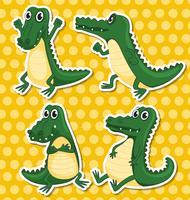 krokodillen vector