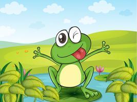 Een lachende kikker