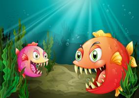 Een kleine en een grote vis