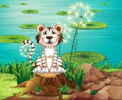 Een dier boven de stronk aan de rivieroever