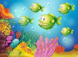 Een groep groene piranha's onder de zee